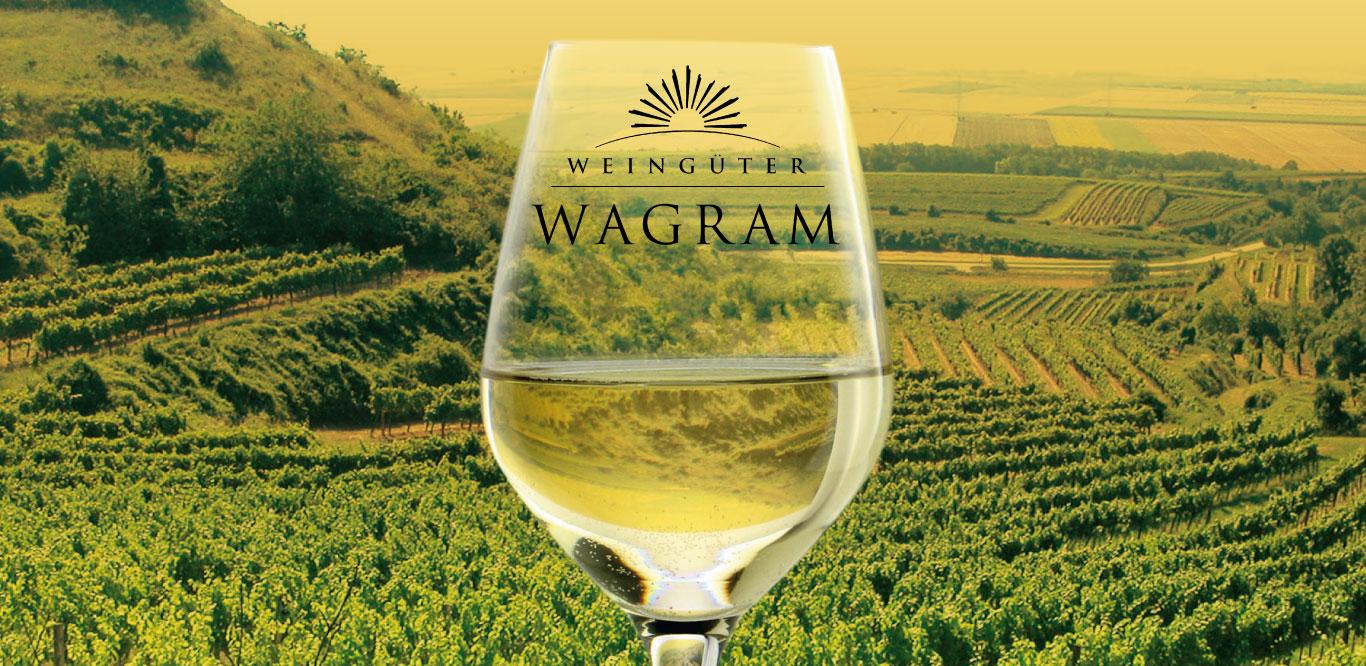 Fels am Wagram - Municipalities worth seeing along the path